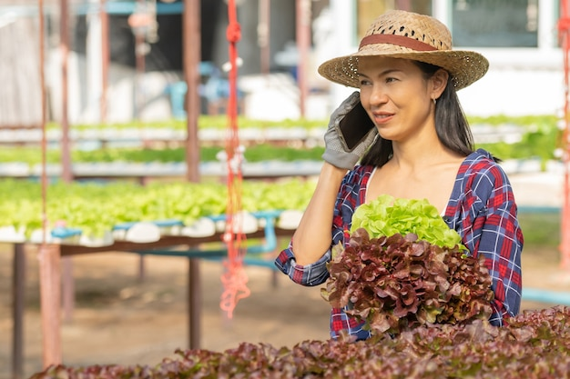 Asian woman farmers working using mobile in vegetables hydroponic farm with happiness. portrait of woman farmer checking quality of green salad vegetable with smile in the green house farm.