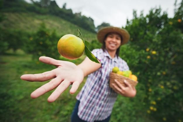 Азиатская женщина-садовник, держащая апельсин в руке и подбрасывающая в воздухе с весельем в саду поля апельсинов в утреннее время.