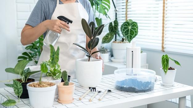 Азиатская женщина-садовник в повседневной одежде, заботится о растениях и разбрызгивает воду с распылителем тумана для растений на столе в комнате дома во время хобби, концепция домашнего сада
