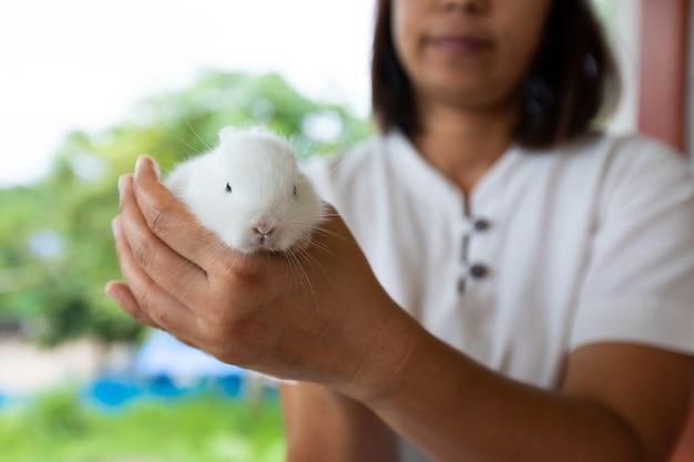 Азиатская женщина, держащая белого кролика младенца под рукой с нежностью. дружба с милым пасхальным кроликом.