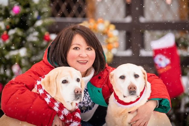 Asian woman hugs two labradors in red christmas scarves in winter outdoors with christmas tree