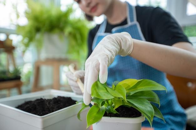 アジアの女性の植栽と庭師自宅の庭の植物に水を噴霧します。