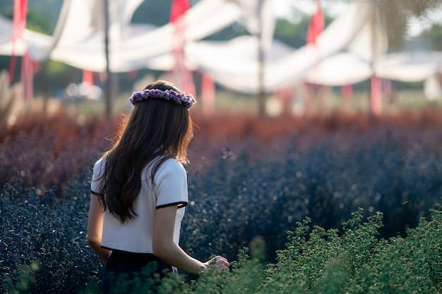 Asian woman posing and holding flower in the morning at colorful flowers field.