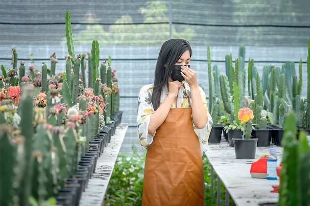 Asian woman in ready set in the cutting of cactus propagation. in the nursery