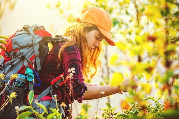 Азиатская женщина путешествия природа. путешествия relax.backpack ходить по лугу в лесу. таиланд