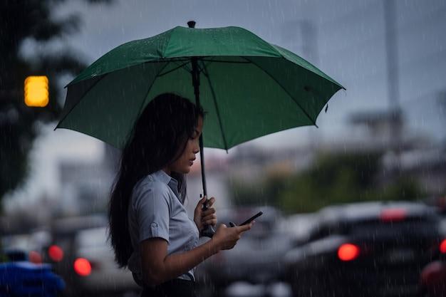 アジアの女性は雨が降っている間傘を使い、通りを渡っています。そして電話を使う