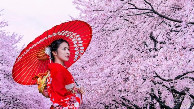 Азиатская женщина нося японские традиционные кимоно и вишневый цвет весной, япония.