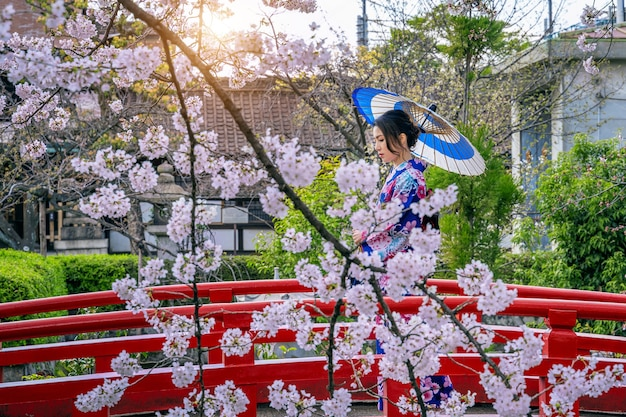 Donna asiatica che indossa kimono tradizionale giapponese e fiori di ciliegio in primavera, tempio di kyoto in giappone.