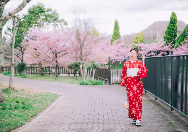 Asian woman wearing kimono with cherry blossoms, sakura in japan.