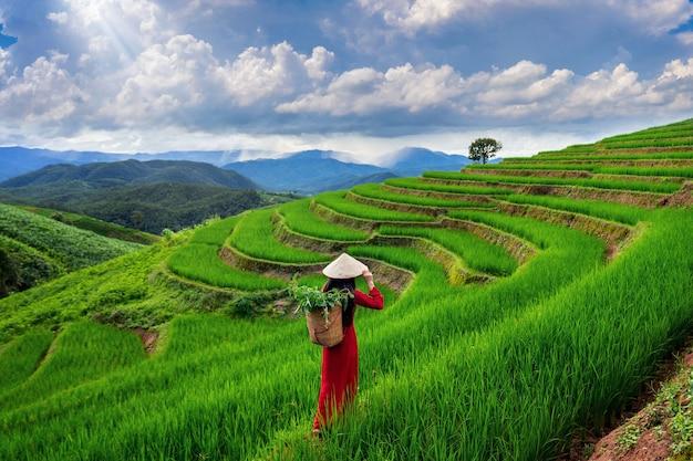 タイ、チェンマイのバンパボンピアンの棚田で伝統的なベトナム文化を身に着けているアジアの女性