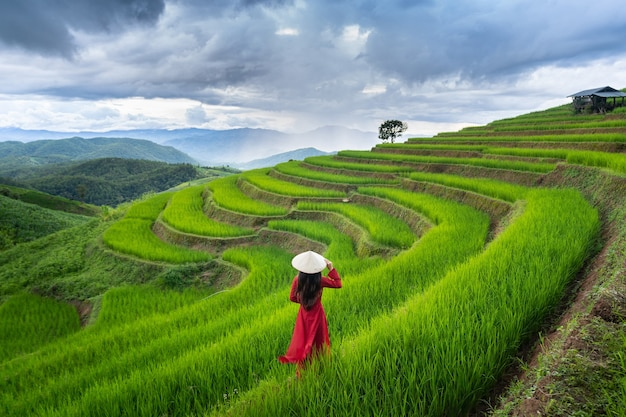 Asian woman wearing vietnam culture traditional at rice terrace of ban pa bong piang in chiangmai, thailand