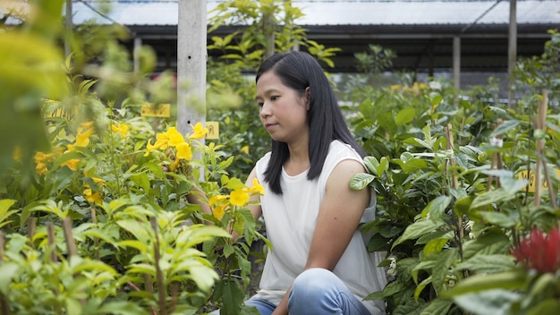 Asian women care flowers, tree in the pergola shop.