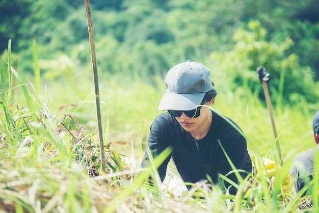 アジアの女性が生態系の植林をしている、タイの国立公園
