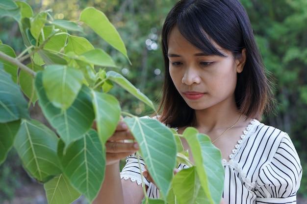 アジアの女性は木を探索し、世界の概念を愛する