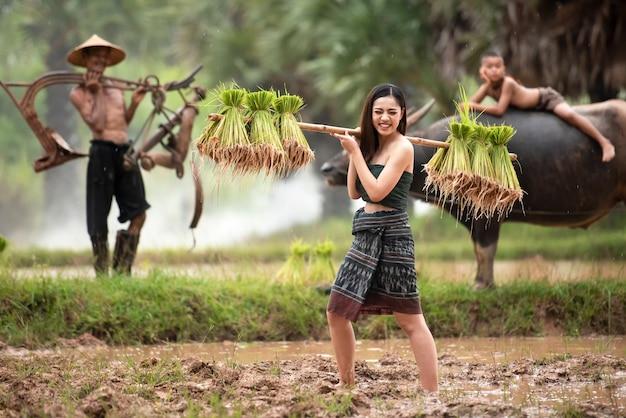 アジアの女性農夫