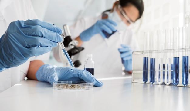 Donne asiatiche che lavorano insieme su un progetto chimico