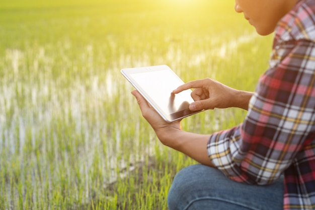 Asian young farmer using tablet at the green rice field
