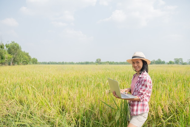 Asian young female farmer in hat standing in field and typing on keyboard of laptop computer. agriculture technology concept. farmer use laptop at the gold rice field to take care of her rice.