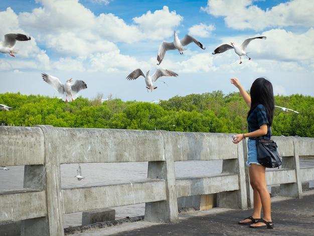 橋の上に立っているカジュアルな餌付けカモメのアジアの若い女性のドレス