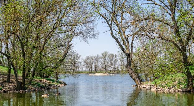 ウクライナの保護区askania-novaの湖