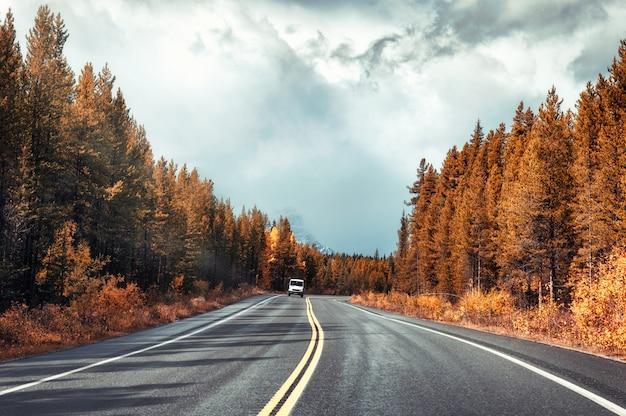 カラフルな秋の森と曇り空のバンフ国立公園のアスファルト道路