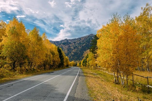 Дорога горы асфальта среди желтых берез осени и высоких утесов под красивым облачным небом.