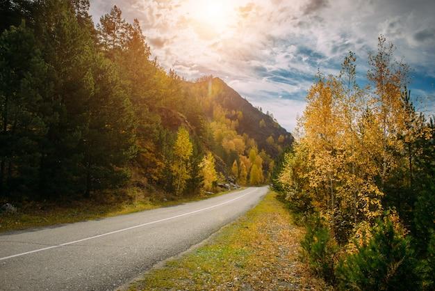 Асфальтовая горная дорога среди желтых осенних деревьев и высоких скал