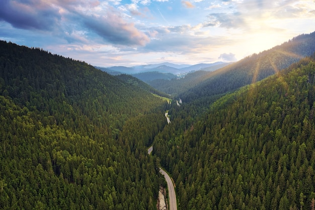緑の松林のある山や丘を通るアスファルトマウンテンロード。山道のある美しい自然景観