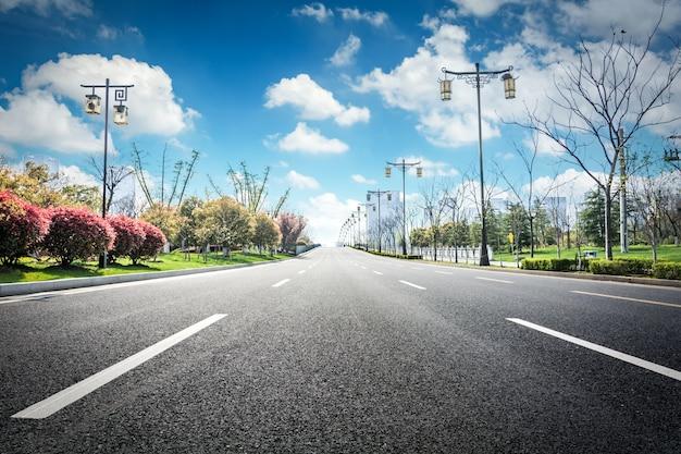 アスファルト道路と森林