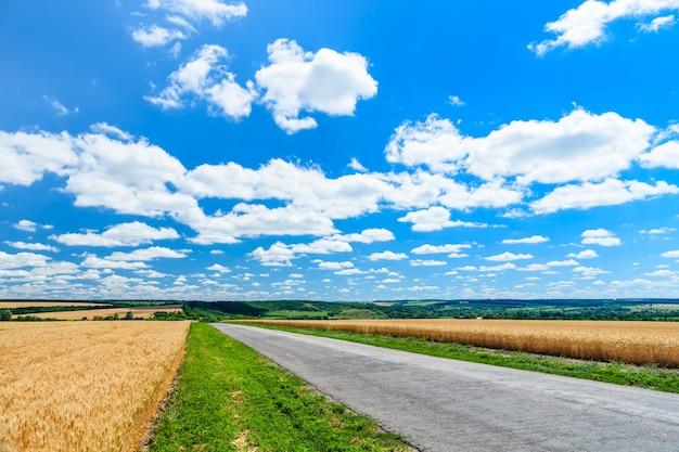 Асфальтовая дорога между двумя полями спелой пшеницы