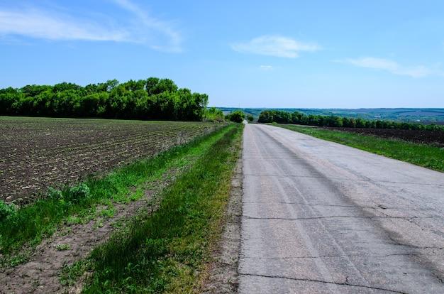 Асфальтовая дорога между двумя полями весной