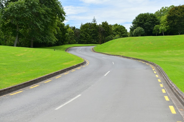 Asphalt road on a bright green hill with trees during daylight