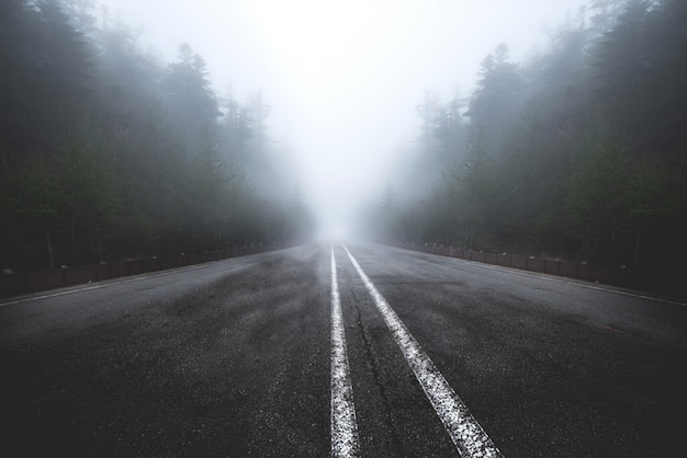 Asphalt road goes through a misty dark