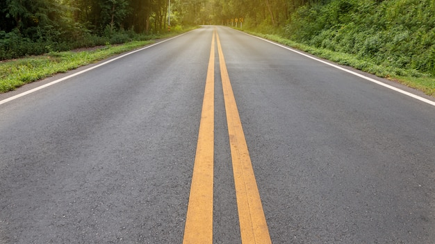 Asphalt road has double yellow lines heading up the forest
