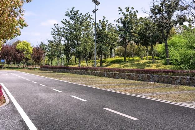 자연 환경에서 아스팔트 도로