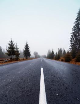 霧の秋の朝の森のアスファルト道路。