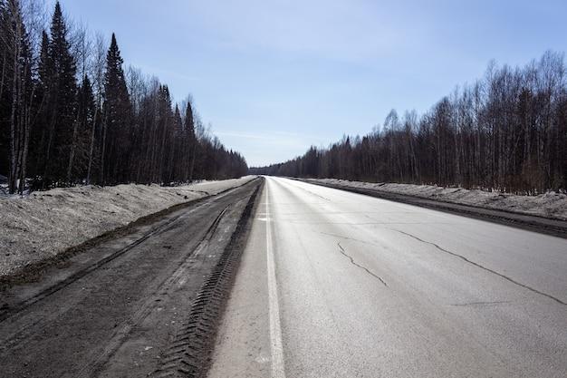 숲에서 아스팔트 도로입니다. 아름다운 여행