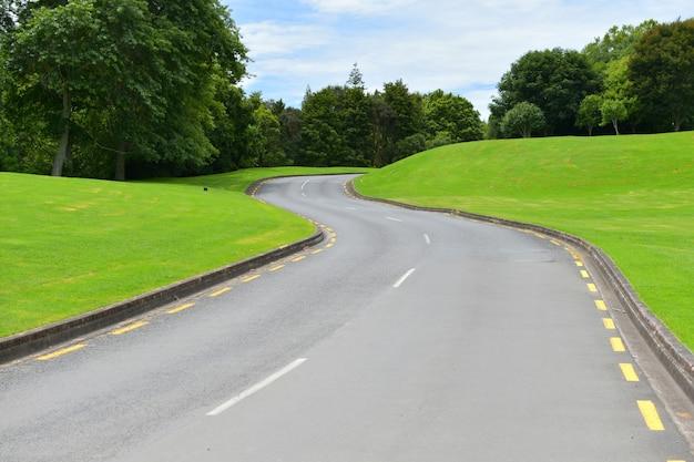 일광 동안 나무와 밝은 녹색 언덕에 아스팔트 도로