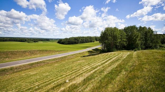アスファルト道路、緑の草や植物のある丘からの眺め