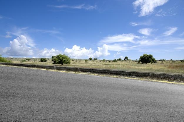 緑の草のあるアスファルト道路