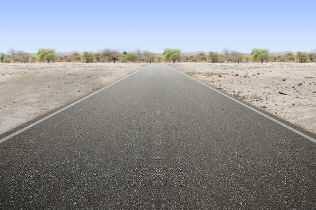 青い空を背景に木と干ばつ土地のアスファルト道路
