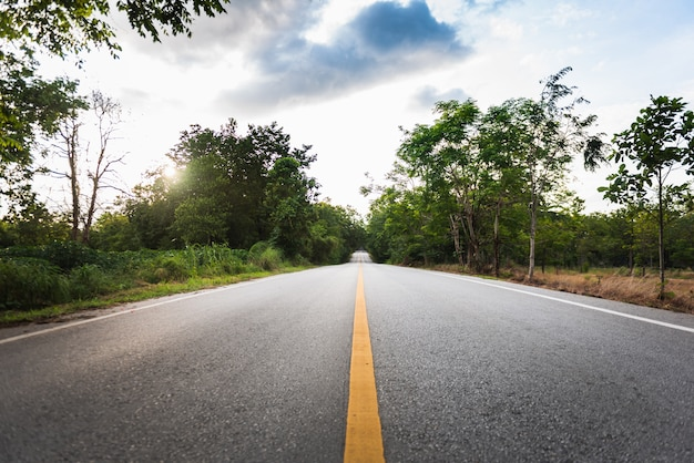 Asphalt road with yellow diving line and forest background