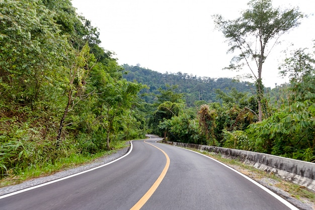 Asphalt winding curve road pass through mountain and forest