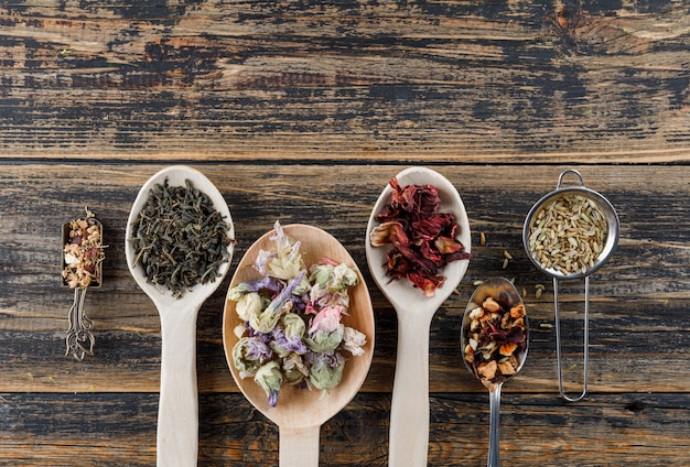 Assorted dried herbs in scoop and spoons with spices