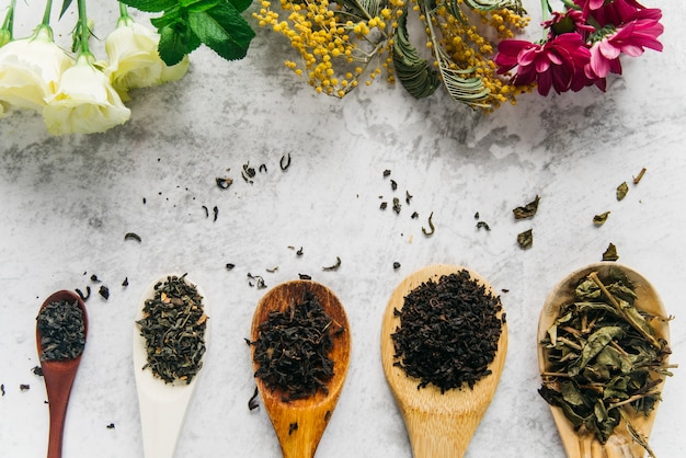 Assorted dried medical herbs tea with flowers on concrete backdrop