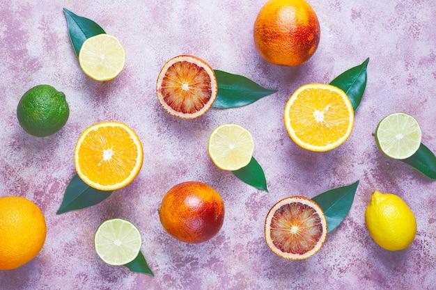 各種フレッシュシトラスフルーツ、レモン、オレンジ、ライム、ブラッドオレンジ、フレッシュでカラフルなトップビュー