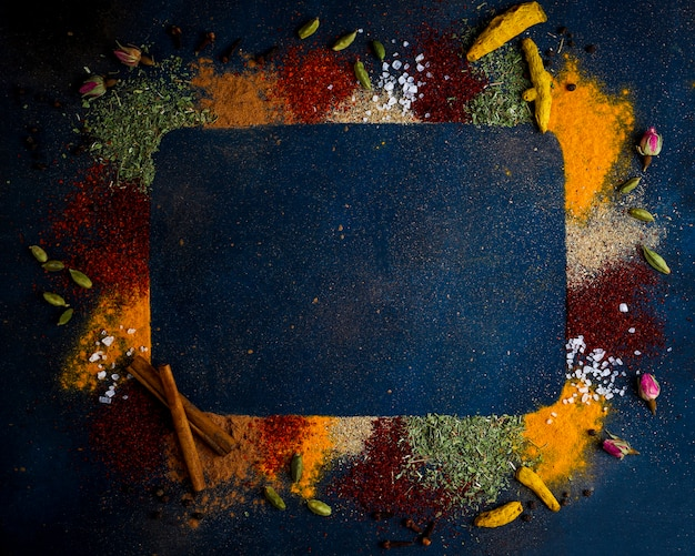 Assorted spices on dark black background. seasonings for food