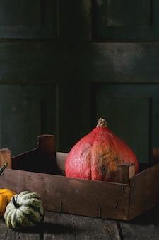 Assortment of different pumpkins