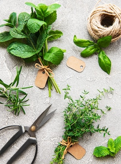 Assortment of fresh aromatic herbs from above on grey concrete background. mint, thyme, basil, rosemary, top view.