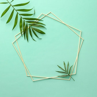 Assortment of green leaves with empty frame